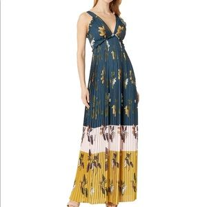 NWT Ted Baker London Maxi Dress